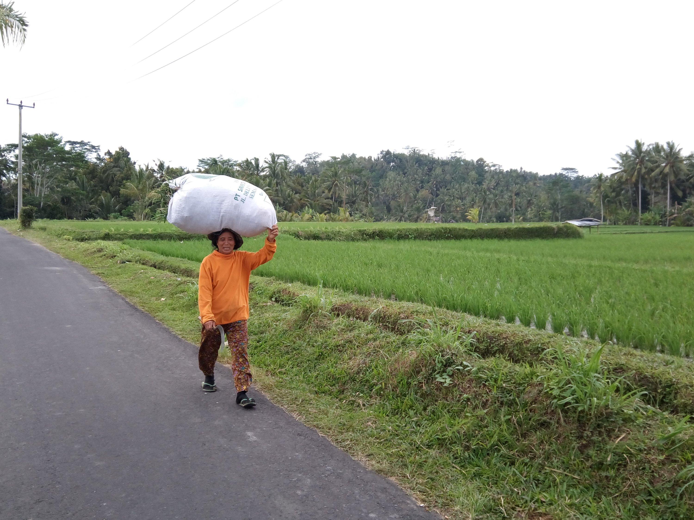 Een boerin op Bali